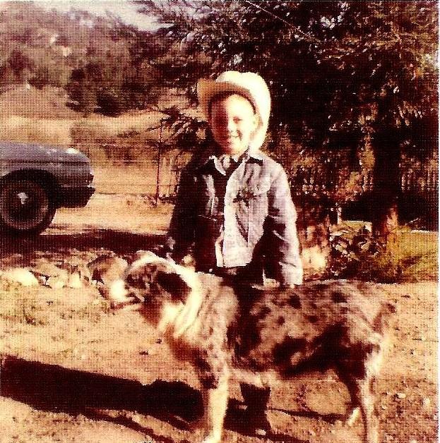 Australian Shepherd History